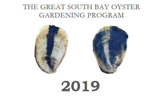 An image of 2 blue oysters